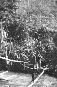 primitive bridge