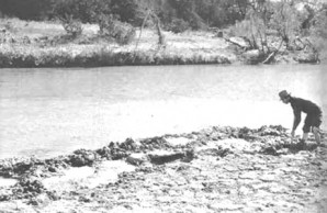Paluxy River ancient mudflat